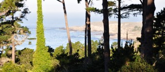 pinewaves_carmel_rental_view